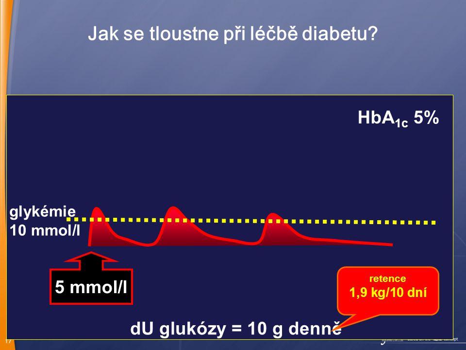 17 Jak se tloustne při léčbě diabetu.