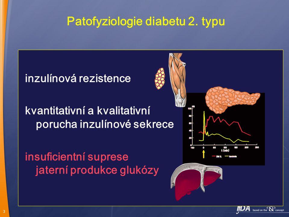 3 Patofyziologie diabetu 2.