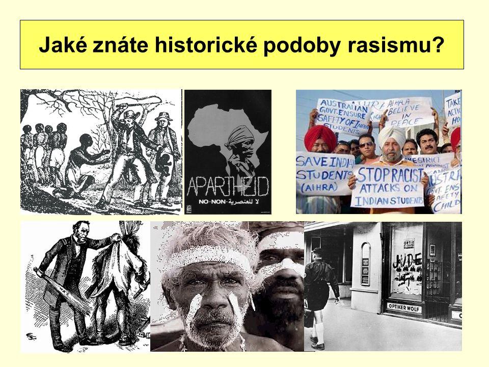 Jaké znáte historické podoby rasismu?