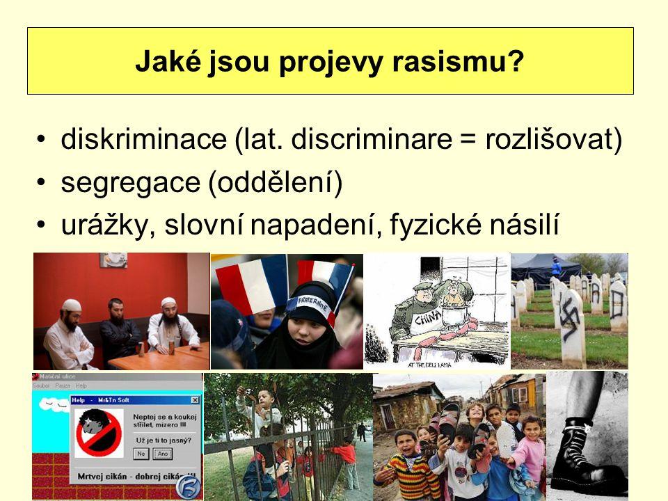 diskriminace (lat. discriminare = rozlišovat) segregace (oddělení) urážky, slovní napadení, fyzické násilí Jaké jsou projevy rasismu?