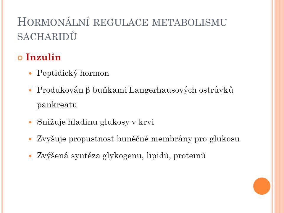 H ORMONÁLNÍ REGULACE METABOLISMU SACHARIDŮ Inzulín Peptidický hormon Produkován  buňkami Langerhausových ostrůvků pankreatu Snižuje hladinu glukosy v krvi Zvyšuje propustnost buněčné membrány pro glukosu Zvýšená syntéza glykogenu, lipidů, proteinů