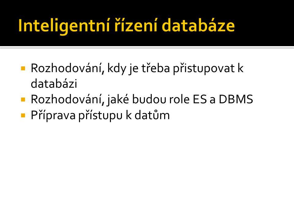  Rozhodování, kdy je třeba přistupovat k databázi  Rozhodování, jaké budou role ES a DBMS  Příprava přístupu k datům