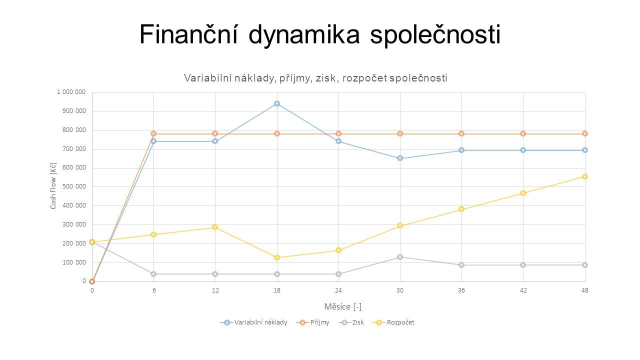Finanční dynamika společnosti