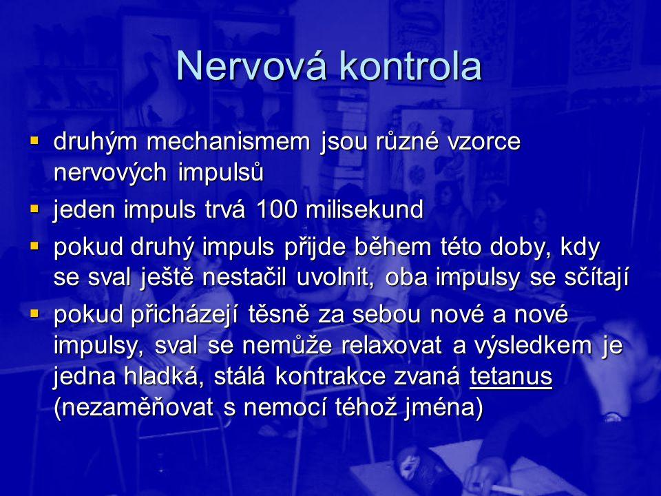 Nervová kontrola  druhým mechanismem jsou různé vzorce nervových impulsů  jeden impuls trvá 100 milisekund  pokud druhý impuls přijde během této do