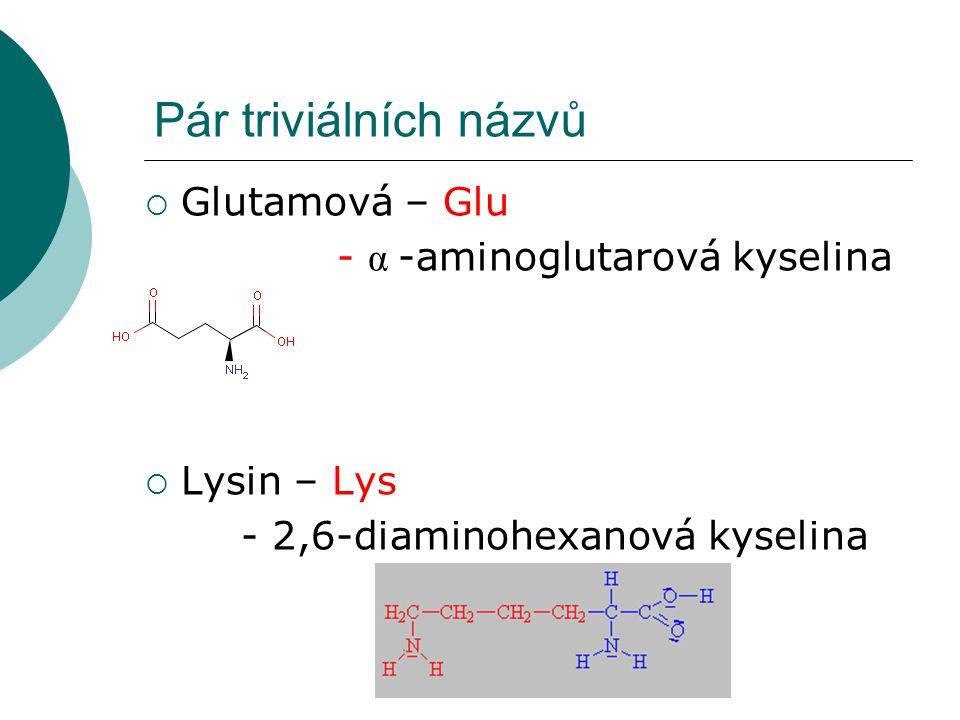Pár triviálních názvů  Glutamová – Glu - α -aminoglutarová kyselina  Lysin – Lys - 2,6-diaminohexanová kyselina