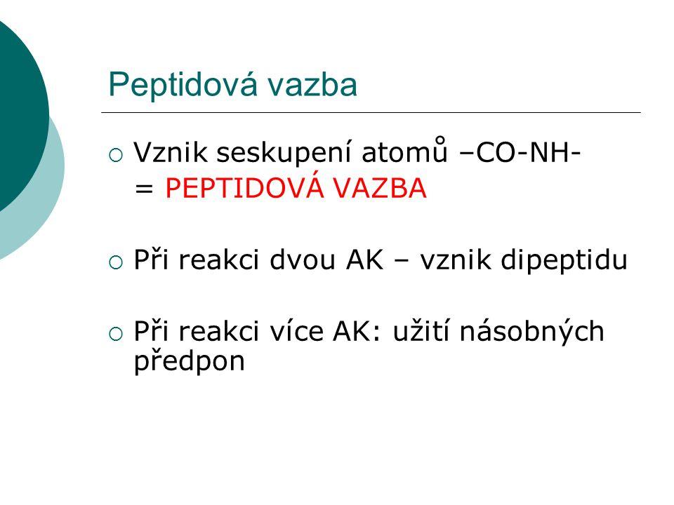 Peptidová vazba  Vznik seskupení atomů –CO-NH- = PEPTIDOVÁ VAZBA  Při reakci dvou AK – vznik dipeptidu  Při reakci více AK: užití násobných předpon