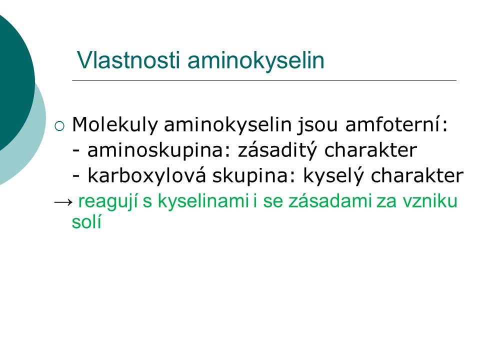 Vlastnosti aminokyselin  Molekuly aminokyselin jsou amfoterní: - aminoskupina: zásaditý charakter - karboxylová skupina: kyselý charakter → reagují s