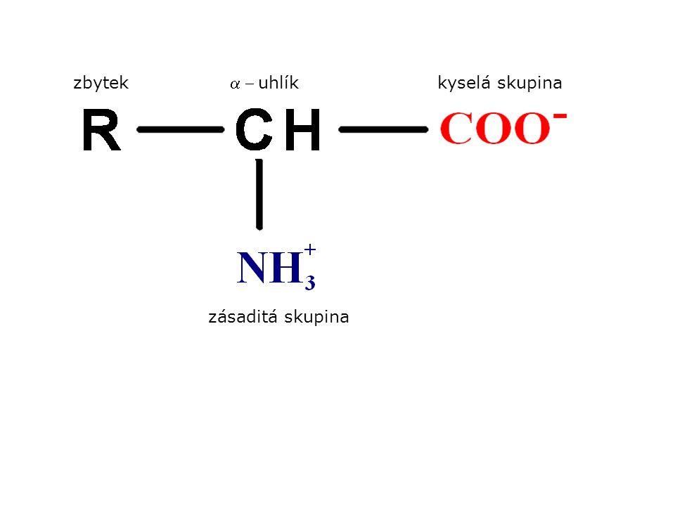 zbytekkyselá skupina uhlík zásaditá skupina