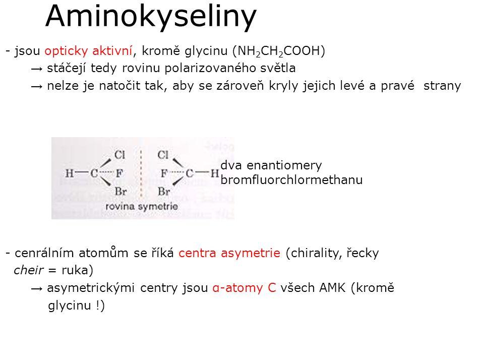 Aminokyseliny - jsou opticky aktivní, kromě glycinu (NH 2 CH 2 COOH) → stáčejí tedy rovinu polarizovaného světla → nelze je natočit tak, aby se zárove
