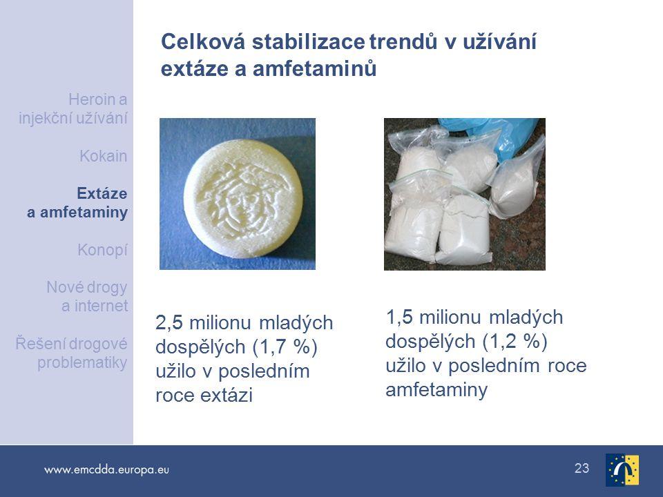 23 2,5 milionu mladých dospělých (1,7 %) užilo v posledním roce extázi 1,5 milionu mladých dospělých (1,2 %) užilo v posledním roce amfetaminy Celková stabilizace trendů v užívání extáze a amfetaminů Heroin a injekční užívání Kokain Extáze a amfetaminy Konopí Nové drogy a internet Řešení drogové problematiky