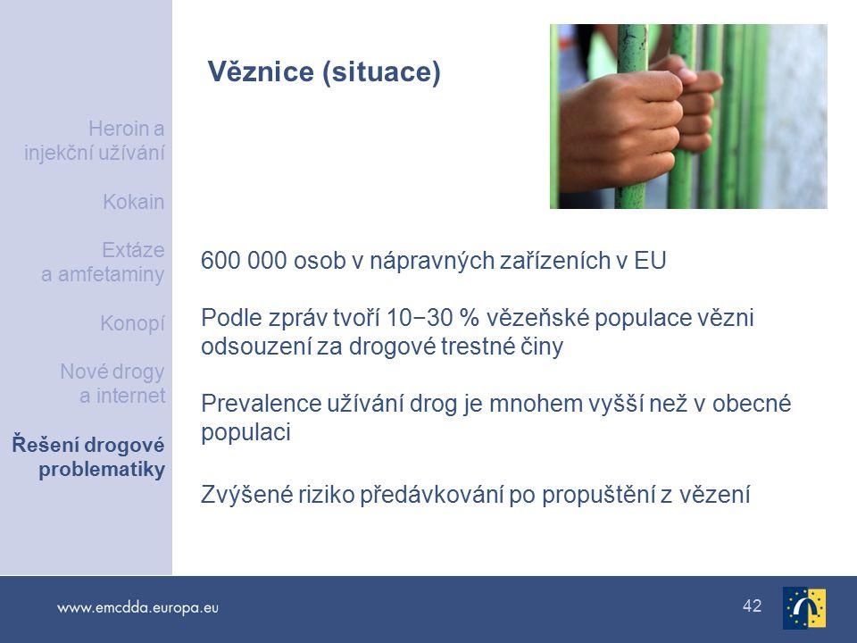 42 Věznice (situace) 600 000 osob v nápravných zařízeních v EU Podle zpráv tvoří 10−30 % vězeňské populace vězni odsouzení za drogové trestné činy Prevalence užívání drog je mnohem vyšší než v obecné populaci Zvýšené riziko předávkování po propuštění z vězení Heroin a injekční užívání Kokain Extáze a amfetaminy Konopí Nové drogy a internet Řešení drogové problematiky