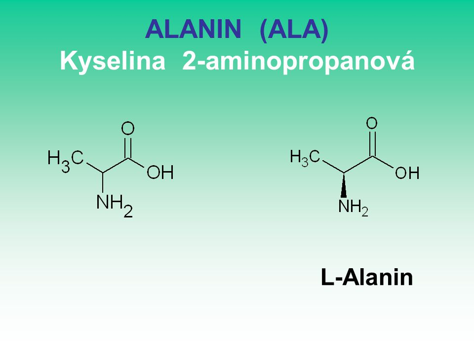 ALANIN (ALA) Kyselina 2-aminopropanová L-Alanin