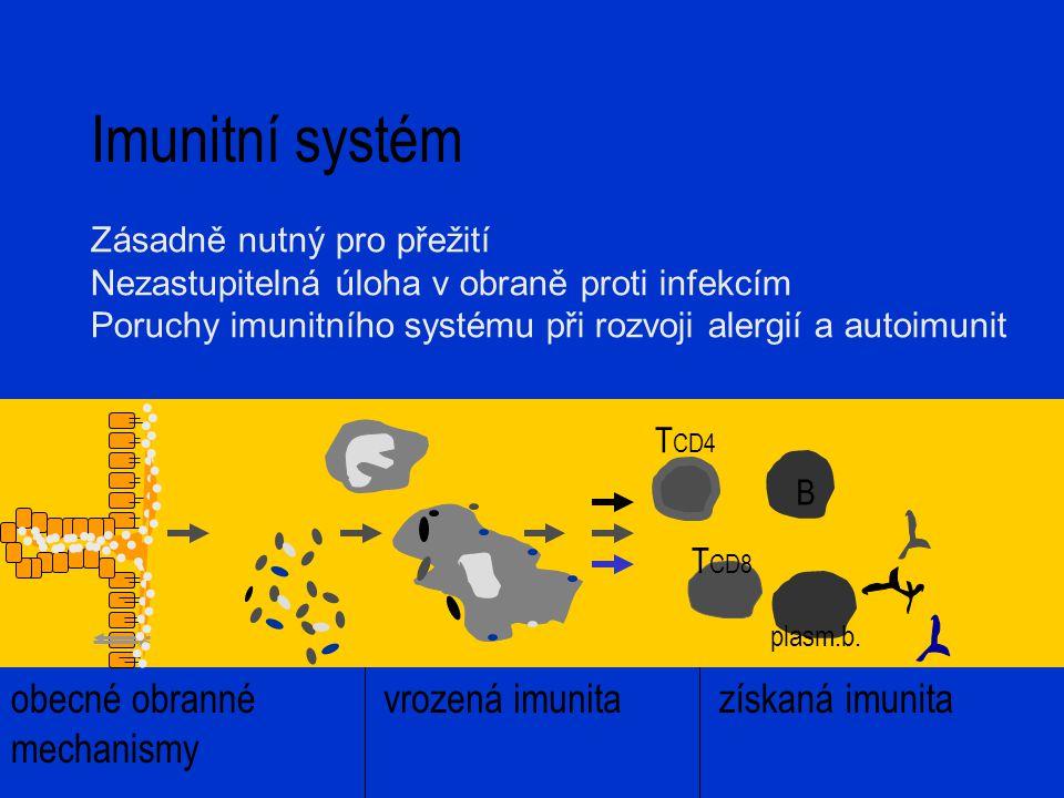 Imunitní systém obecné obranné mechanismy vrozená imunitazískaná imunita B T CD4 plasm.b. T CD8 Zásadně nutný pro přežití Nezastupitelná úloha v obran