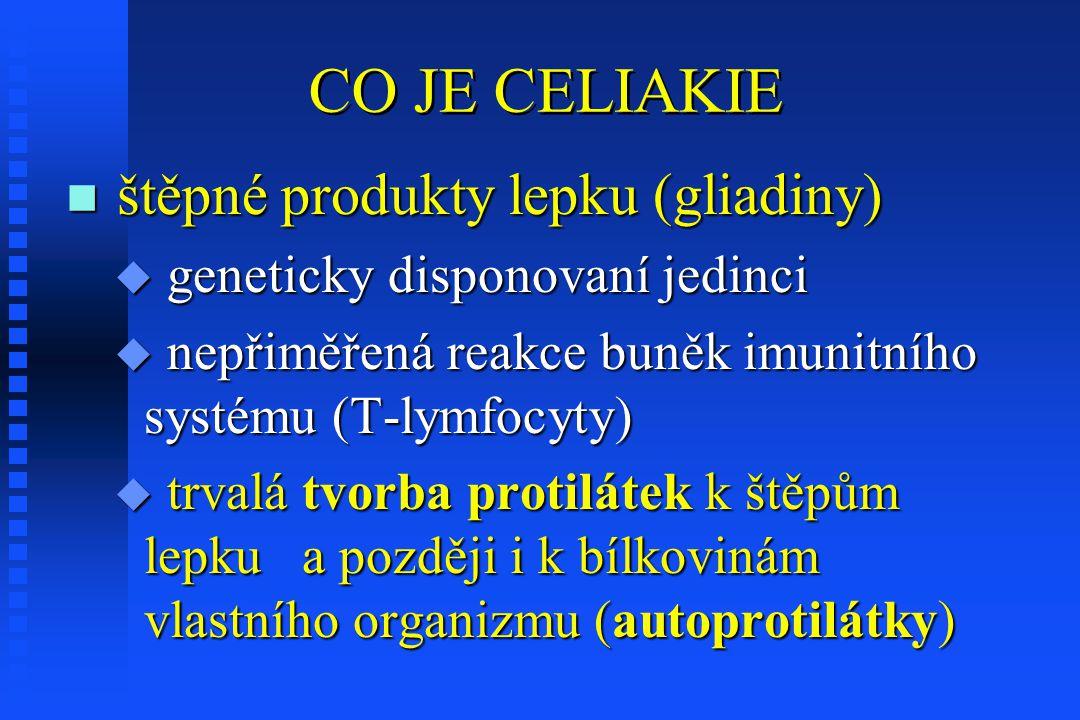 CO JE CELIAKIE n štěpné produkty lepku (gliadiny) u geneticky disponovaní jedinci u nepřiměřená reakce buněk imunitního systému (T-lymfocyty) u trvalá tvorba protilátek k štěpům lepku a později i k bílkovinám vlastního organizmu (autoprotilátky)