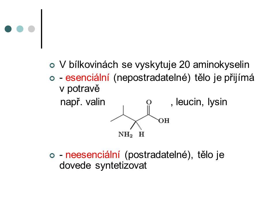 Jednoduché bílkoviny Albuminy – vaječný, mléčný, svalový krevní Globuliny – součást krevního séra, v mléce, vejcích Histony – v buněčných jádrech Skleroproteiny – vysoce odolné bílkoviny - nerozpustné ve vodě - tvoří ochrannou a podpůrnou tkáň živočichů - keratin, fibroin, kolagen (vařením tkání obsahujících kolagen ve vodě získáme želatinu)