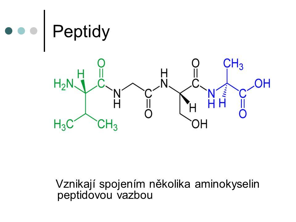 Složené bílkoviny Fosfoproteiny – obsahují H 3 PO 4 V mléce savců – kasein Ve vaječném žloutku – vitelin Glykoproteiny – obsahují sacharid Součástí sekretů četných žláz(sliny, žaludeční šťáva) Lipoproteiny – obsahují lipidy Nukleoproteiny – obsahují nukleové kyseliny V buněčných jádrech Metaloproteiny – obsahují kovy chlorofyl, hemoglobin