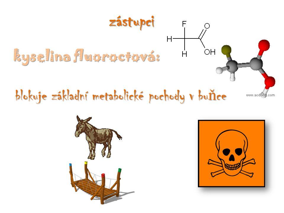 zástupci kyselina fluoroctová: blokuje základní metabolické pochody v bu ň ce