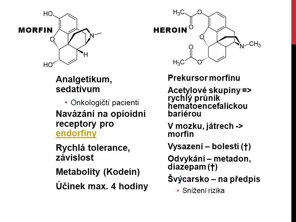KOKAIN Lékařství – lokální anestézie, stimulant, anorektikum Euforie, vzrušení, radost, družnost, sebejistota, koncentrace Blokátor sodíkových kanálů Bránění přenosu vzruchu => Anestetikum Inhibitor serotoninu, dopaminu, noradrenalinu Hromadění => Účinek Působení cca 30 – 60 minut