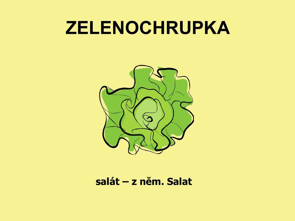 ZELENOCHRUPKA salát – z něm. Salat
