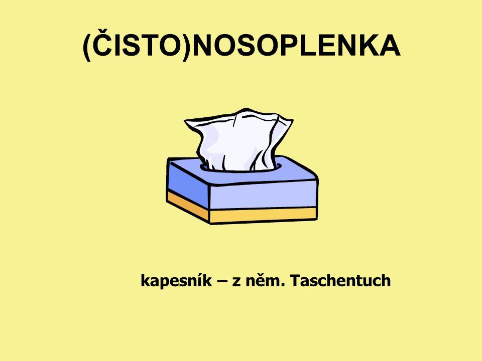 (ČISTO)NOSOPLENKA kapesník – z něm. Taschentuch