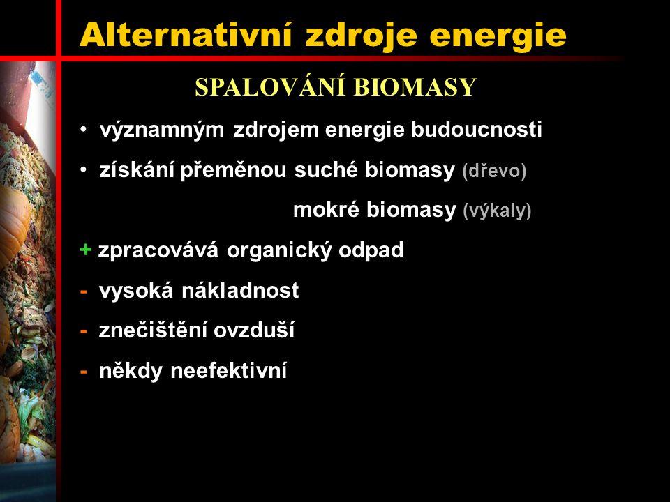 Alternativní zdroje energie SPALOVÁNÍ BIOMASY významným zdrojem energie budoucnosti získání přeměnou suché biomasy (dřevo) mokré biomasy (výkaly) + zp