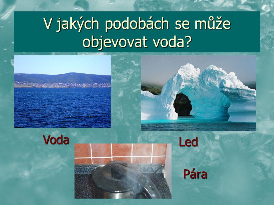 V jakých podobách se může objevovat voda? Pára Led Voda