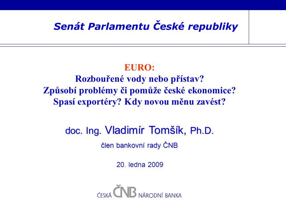 Senát Parlamentu České republiky EURO: Rozbouřené vody nebo přístav.