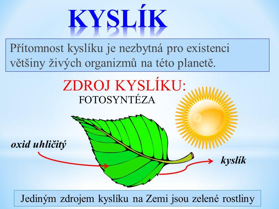 Přítomnost kyslíku je nezbytná pro existenci většiny živých organizmů na této planetě.