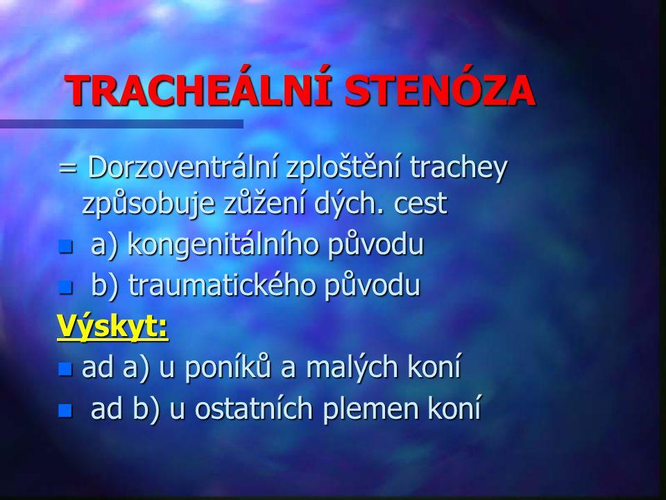 TRACHEÁLNÍ STENÓZA = Dorzoventrální zploštění trachey způsobuje zůžení dých.