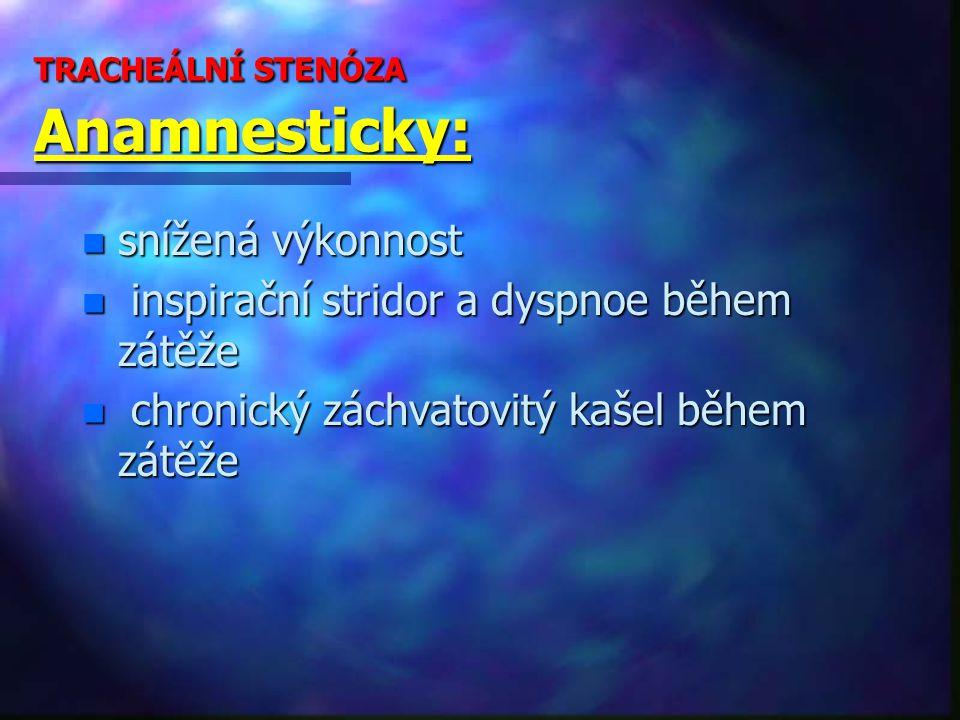 TRACHEÁLNÍ STENÓZA Anamnesticky: n snížená výkonnost n inspirační stridor a dyspnoe během zátěže n chronický záchvatovitý kašel během zátěže