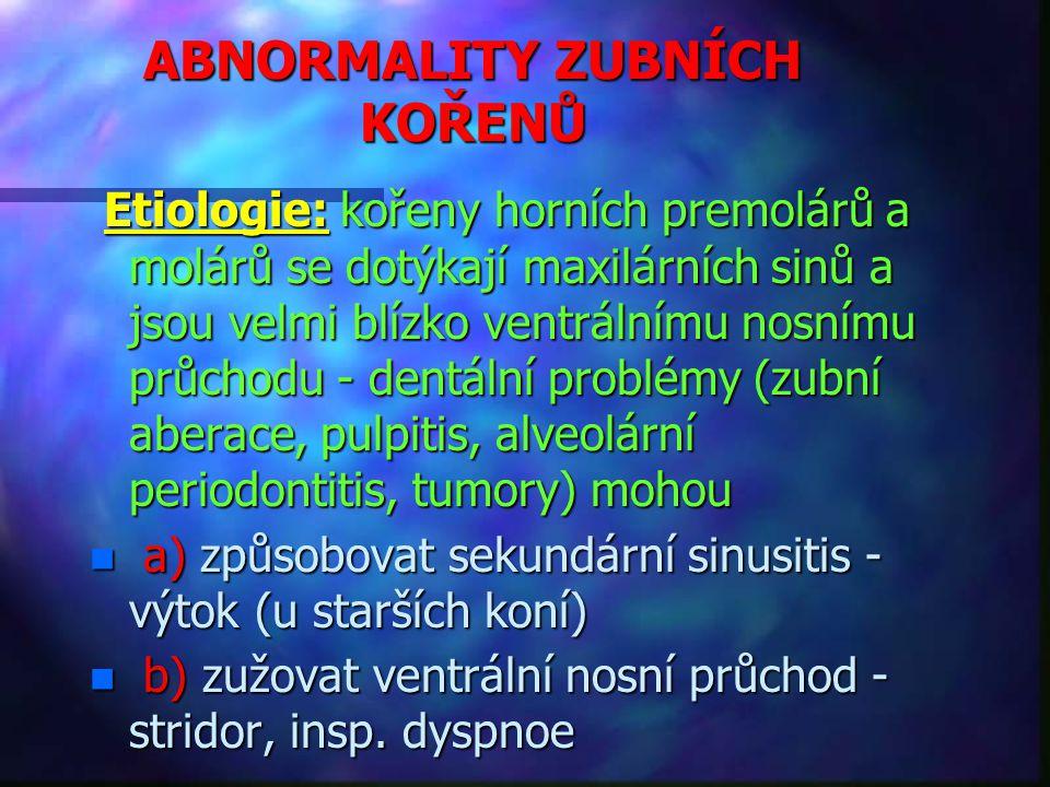 ABNORMALITY ZUBNÍCH KOŘENŮ Etiologie: kořeny horních premolárů a molárů se dotýkají maxilárních sinů a jsou velmi blízko ventrálnímu nosnímu průchodu - dentální problémy (zubní aberace, pulpitis, alveolární periodontitis, tumory) mohou Etiologie: kořeny horních premolárů a molárů se dotýkají maxilárních sinů a jsou velmi blízko ventrálnímu nosnímu průchodu - dentální problémy (zubní aberace, pulpitis, alveolární periodontitis, tumory) mohou n a) způsobovat sekundární sinusitis - výtok (u starších koní) n b) zužovat ventrální nosní průchod - stridor, insp.