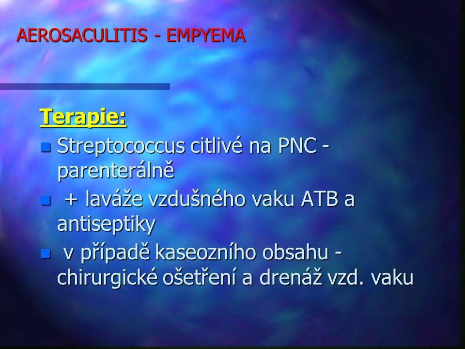 AEROSACULITIS - EMPYEMA Terapie: n Streptococcus citlivé na PNC - parenterálně n + laváže vzdušného vaku ATB a antiseptiky n v případě kaseozního obsahu - chirurgické ošetření a drenáž vzd.