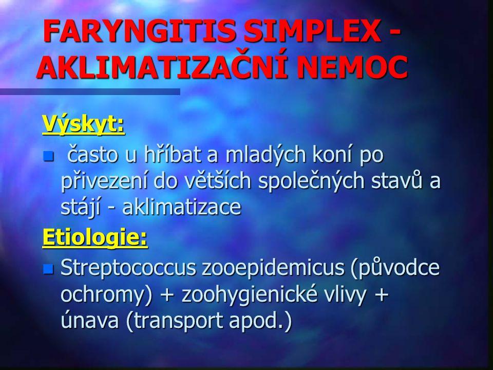 FARYNGITIS SIMPLEX - AKLIMATIZAČNÍ NEMOC Výskyt: n často u hříbat a mladých koní po přivezení do větších společných stavů a stájí - aklimatizace Etiologie: n Streptococcus zooepidemicus (původce ochromy) + zoohygienické vlivy + únava (transport apod.)