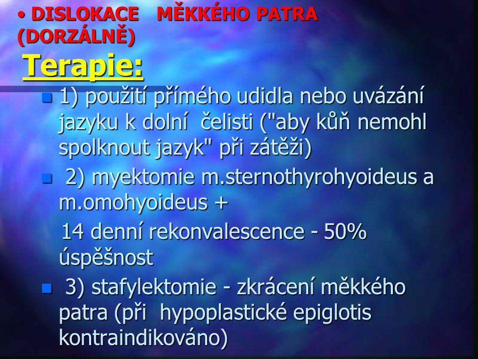 DISLOKACE MĚKKÉHO PATRA (DORZÁLNĚ) Terapie: DISLOKACE MĚKKÉHO PATRA (DORZÁLNĚ) Terapie: n 1) použití přímého udidla nebo uvázání jazyku k dolní čelisti ( aby kůň nemohl spolknout jazyk při zátěži) n 2) myektomie m.sternothyrohyoideus a m.omohyoideus + 14 denní rekonvalescence - 50% úspěšnost 14 denní rekonvalescence - 50% úspěšnost n 3) stafylektomie - zkrácení měkkého patra (při hypoplastické epiglotis kontraindikováno)