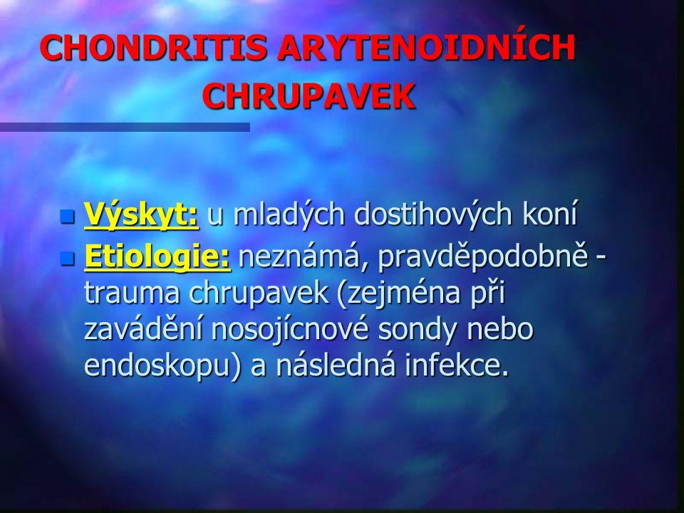 CHONDRITIS ARYTENOIDNÍCH CHRUPAVEK n Výskyt: u mladých dostihových koní n Etiologie: neznámá, pravděpodobně - trauma chrupavek (zejména při zavádění nosojícnové sondy nebo endoskopu) a následná infekce.