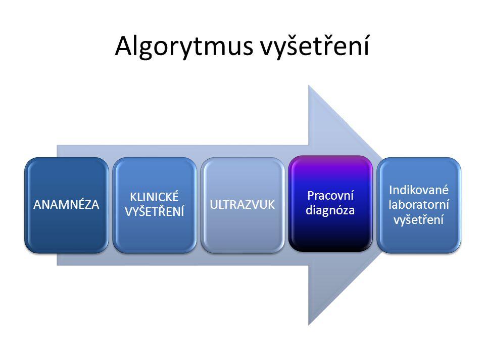 Algorytmus vyšetření ANAMNÉZA KLINICKÉ VYŠETŘENÍ ULTRAZVUK Pracovní diagnóza Indikované laboratorní vyšetření