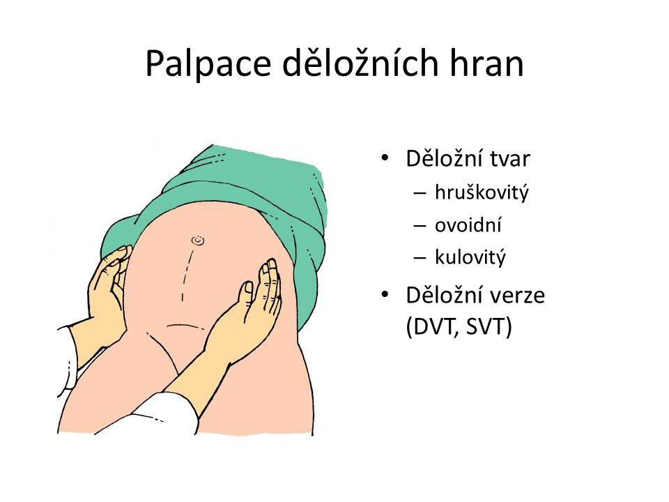 Děložní tvar – hruškovitý – ovoidní – kulovitý Děložní verze (DVT, SVT) Palpace děložních hran