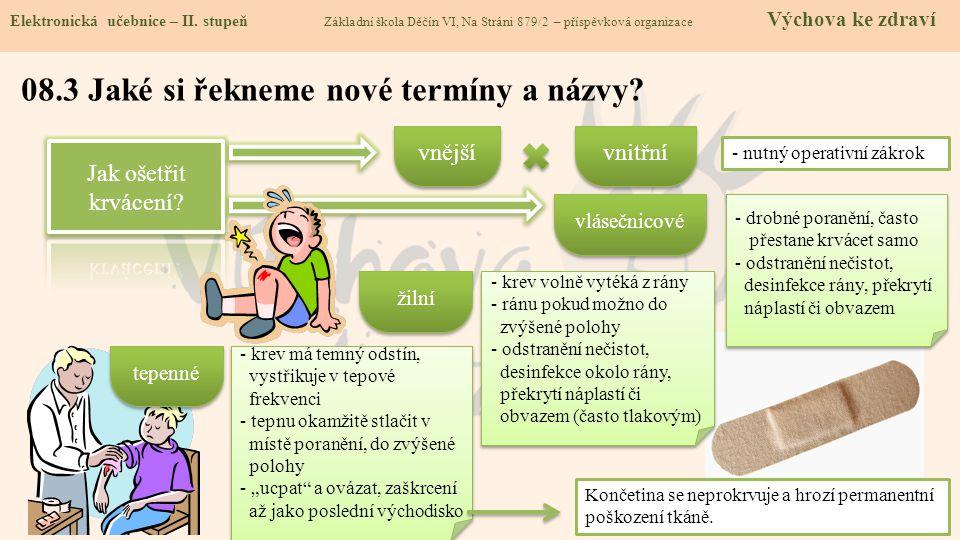 08.3 Jaké si řekneme nové termíny a názvy. Elektronická učebnice - II.