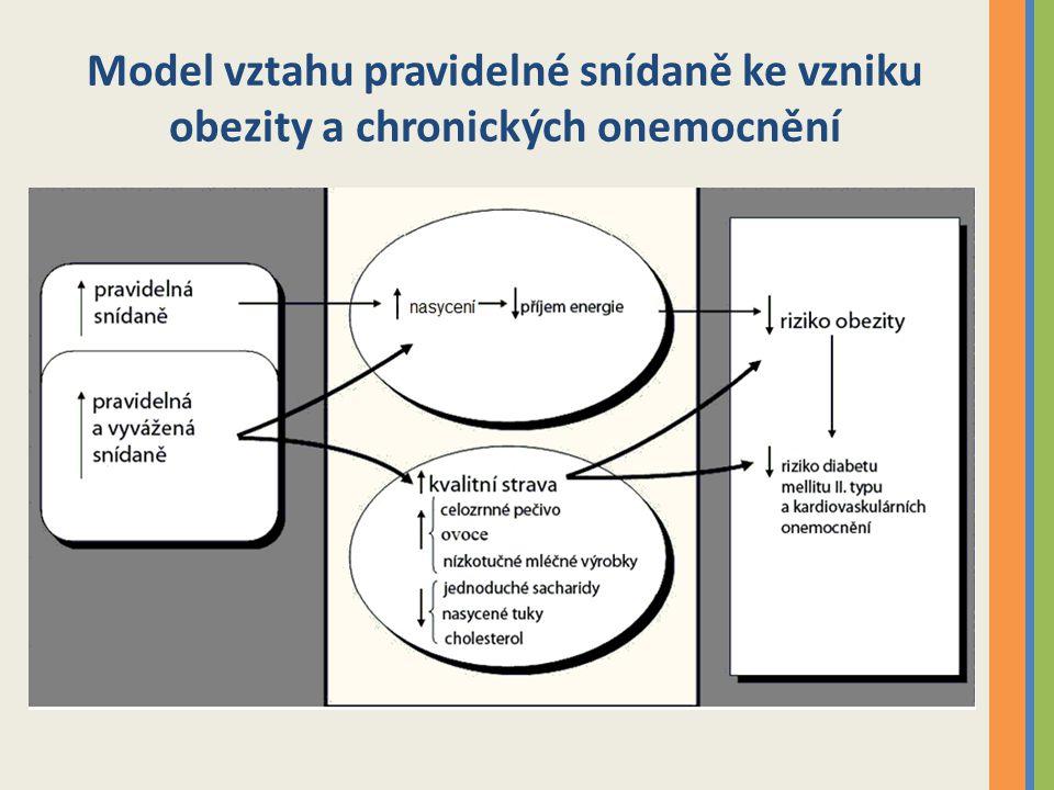 Model vztahu pravidelné snídaně ke vzniku obezity a chronických onemocnění