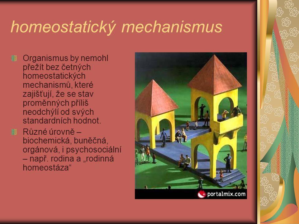 homeostatický mechanismus Organismus by nemohl přežít bez četných homeostatických mechanismů, které zajišťují, že se stav proměnných příliš neodchýlí od svých standardních hodnot.
