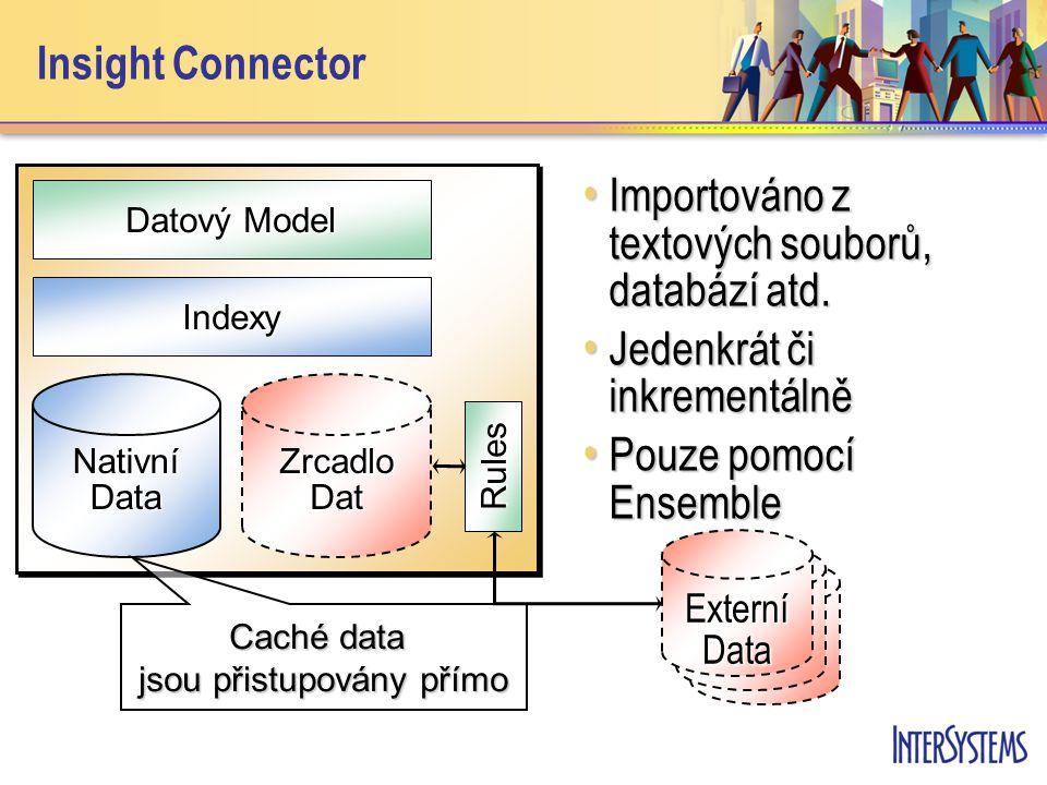 Insight Connector Indexy Datový Model Nativní Data Caché data jsou přistupovány přímo ZrcadloDat Rules Externí Data Importováno z textových souborů, databází atd.