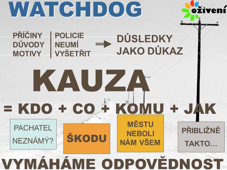 PŘÍČINY DŮVODY MOTIVY POLICIE NEUMÍ VYŠETŘIT DŮSLEDKY JAKO DŮKAZ KAUZA = KDO + CO + KOMU + JAK PACHATEL NEZNÁMÝ.