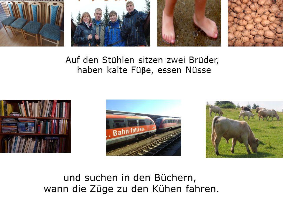 Auf den Stühlen sitzen zwei Brüder, haben kalte Fü β e, essen Nüsse und suchen in den Büchern, wann die Züge zu den Kühen fahren.