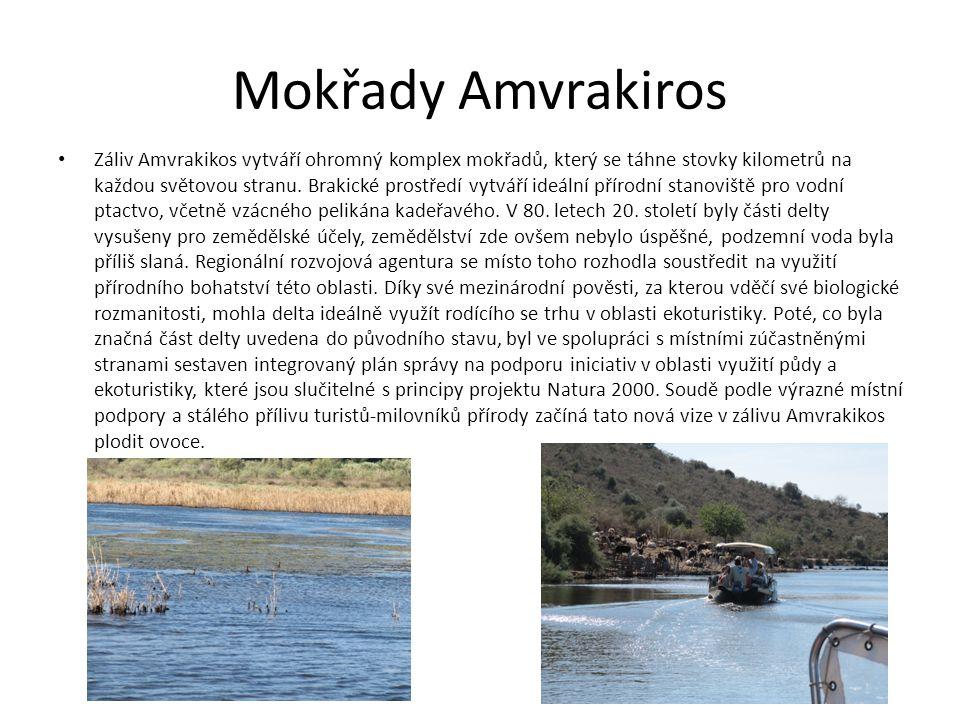 Mokřady Amvrakiros Záliv Amvrakikos vytváří ohromný komplex mokřadů, který se táhne stovky kilometrů na každou světovou stranu.