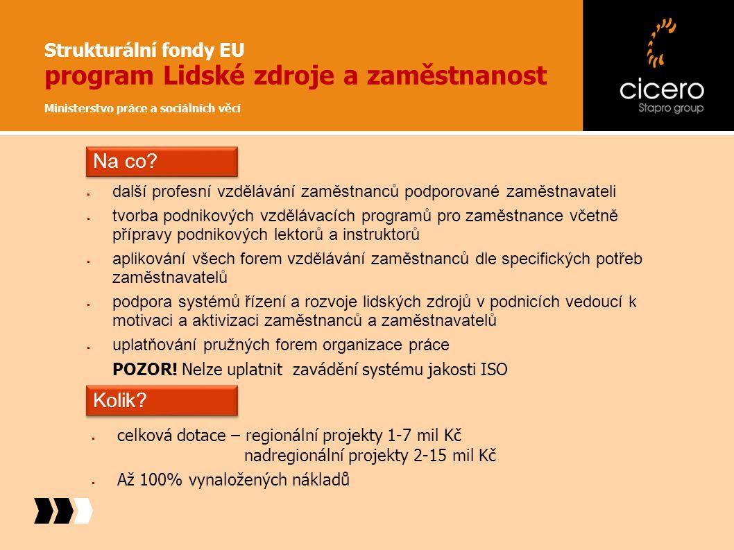 Strukturální fondy EU program Lidské zdroje a zaměstnanost Ministerstvo práce a sociálních věcí  celková dotace – regionální projekty 1-7 mil Kč nadr