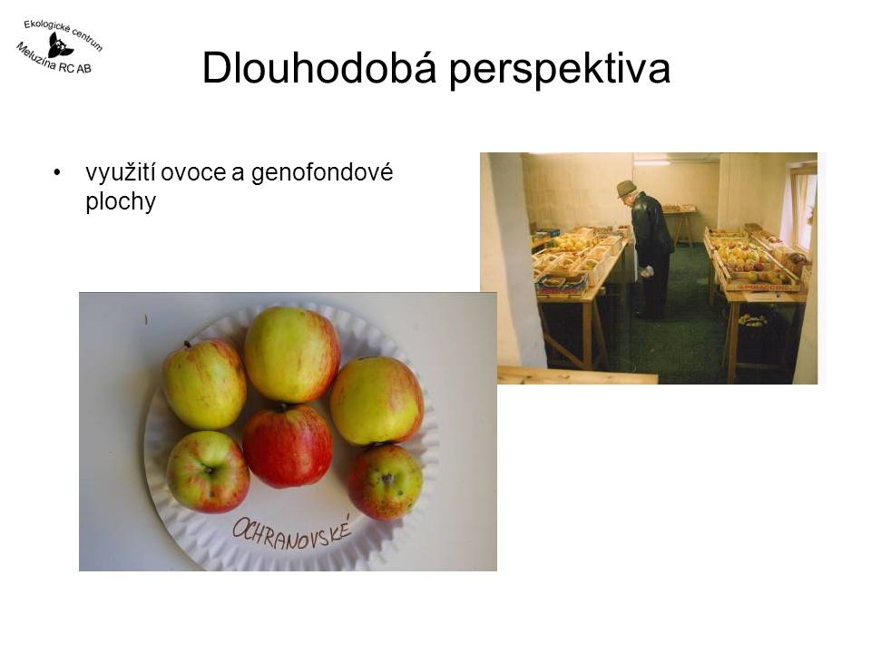 Dlouhodobá perspektiva využití ovoce a genofondové plochy