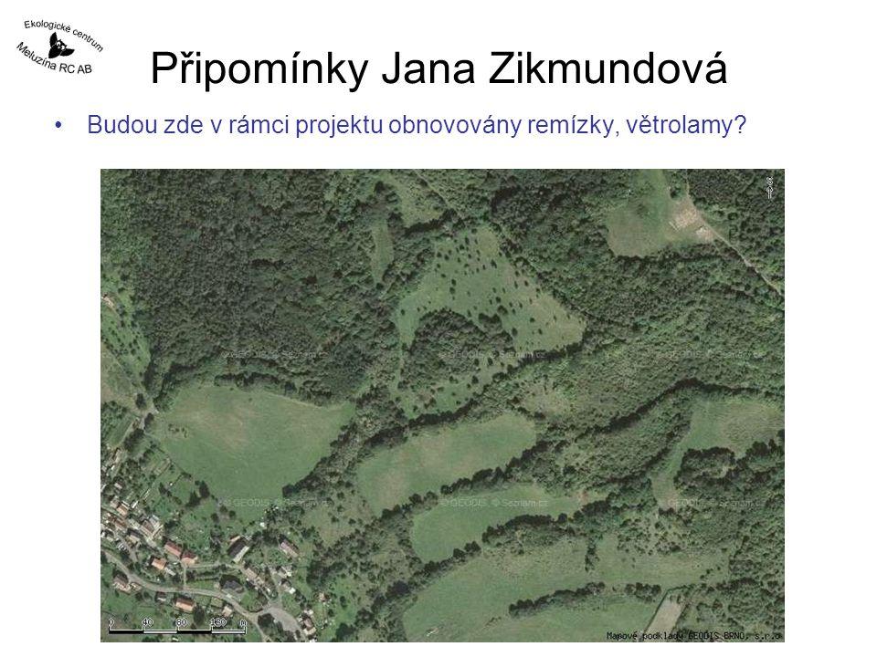 Připomínky Jana Zikmundová Budou zde v rámci projektu obnovovány remízky, větrolamy?
