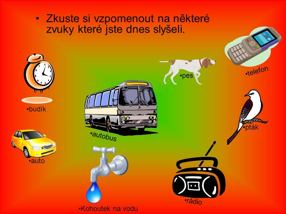 Zkuste si vzpomenout na některé zvuky které jste dnes slyšeli. autobus auto budík Kohoutek na vodu pes pták rádio telefon