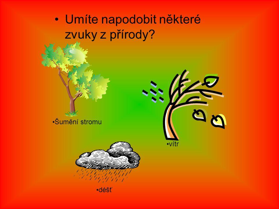Umíte napodobit některé zvuky z přírody Šumění stromu vítr déšť
