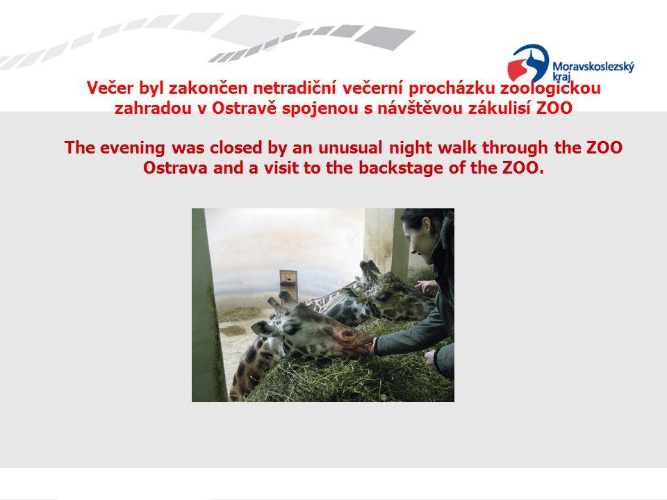 Večer byl zakončen netradiční večerní procházku zoologickou zahradou v Ostravě spojenou s návštěvou zákulisí ZOO The evening was closed by an unusual night walk through the ZOO Ostrava and a visit to the backstage of the ZOO.